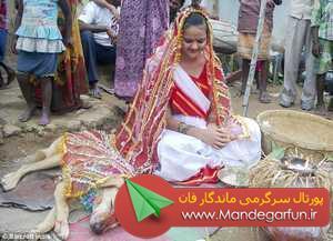 تصاویر  ازدواج جنجالی دختر هندی 18 ساله با سگ ولگرد