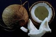 روغن نارگیل مانع از پوسیدگی دندان میشود