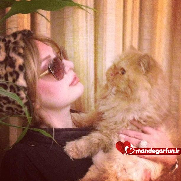 عکس جدید نیوشا ضیغمی و گربه ی جالبش